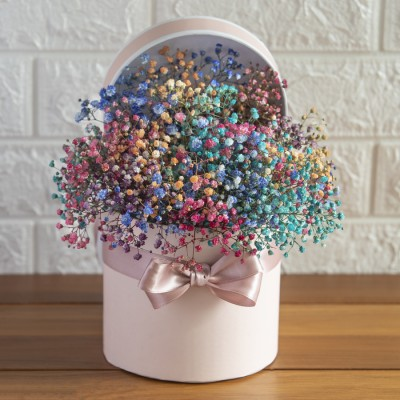 Colourful Baby Breath  in a Round Box