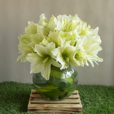 White Lillies in a Glass Pot