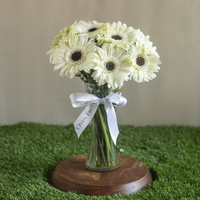 Vase Of White Gerberas