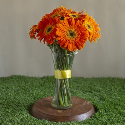 Vase of Orange Gerberas